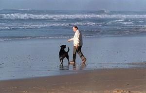 Baltique, le chien de Francois Mitterand