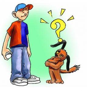 comportement du chien lors de l'accueil d'une nouvelle personne